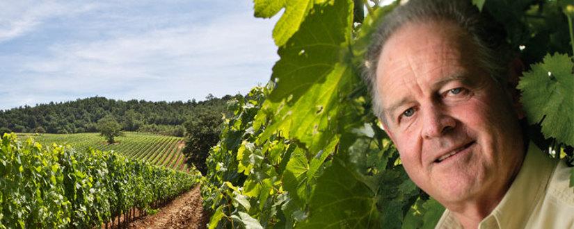 Weingut Antinori • Wein kaufen